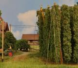 Hallertauer Bauernhof von Manfred.008.jpg