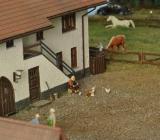 Hallertauer Bauernhof von Manfred.012.jpg