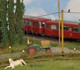 Hallertauer Bauernhof von Manfred.019.jpg
