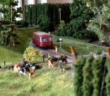 ausstellung-im-heimat-und-hopfenmuseum-mainburg-011
